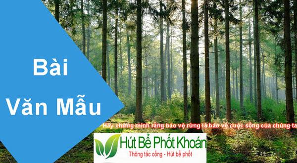 Hãy chứng minh rằng bảo vệ rừng là bảo vệ cuộc sống của chúng ta