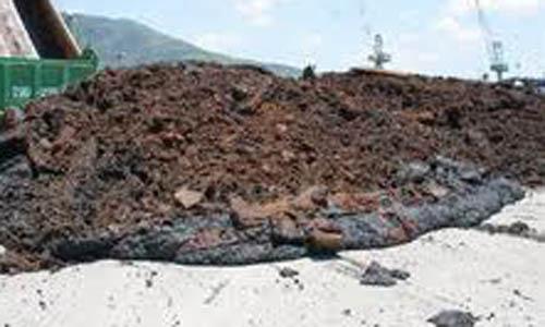 Xử lý kim loại nặng trong đất