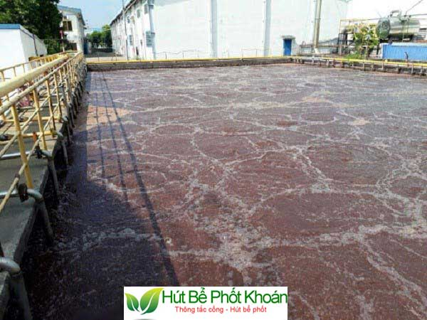 sử dụng bùn vi sinh trong xử lý nước thải