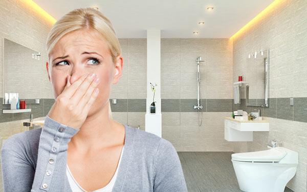 Mùi hôi bắt nguồn từ nhà vệ sinh