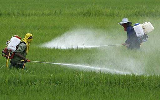 Ô nhiễm nguồn nước từ sản xuất nông nghiệp