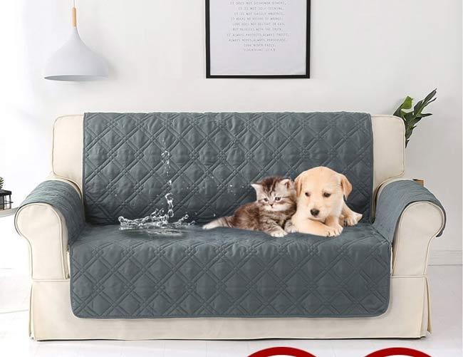 Cách khử mùi khai trên ghế Sofa
