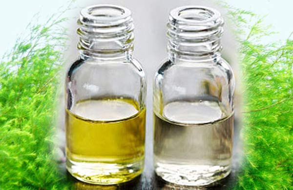 Khử mùi khai trong phòng ngủ bằng tinh dầu thơm