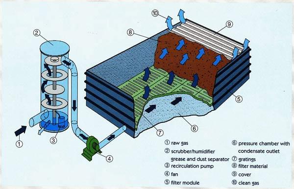 Phương pháp xử lý khí thải sinh học