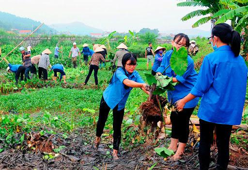 Hăng hái tham gia các hoạt động bảo vệ môi trường