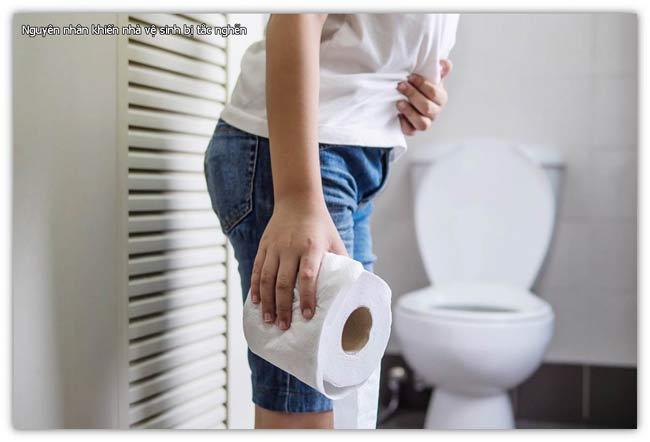 Nguyên nhân khiến nhà vệ sinh bị tắc nghẽn